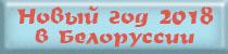 Новый год 2014 в Белоруссии