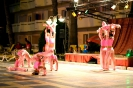 Шоу студия Эврика. Восточные танцы